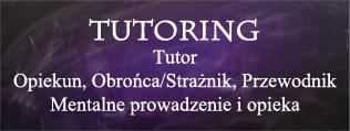 Tutoring, Tutor